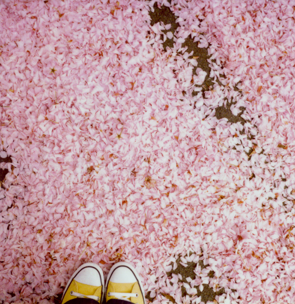 Pink_feet