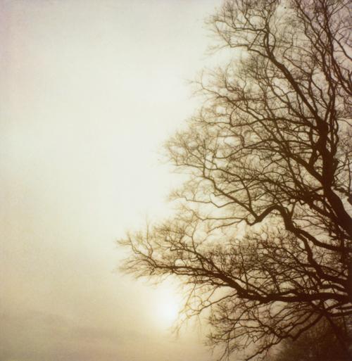 Narnia_sun