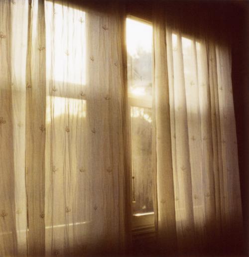 Alex_window